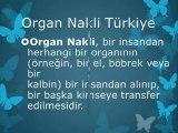 Organ Nakli Nasıl Yapılır,Böbrek Nakli,Organ Naklinin Önemi,Organ Nakli Nedir,Organ Bağışı,Organ Nakli hakkında bilgi