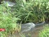 Reportage de TLC sur les réserves d'eau du Choletais, avec MétéOuest