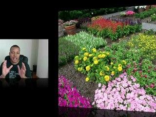 Samsung Galaxy S III Camera Test (1080p) - SoldierKnowsBest