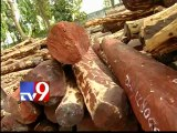 Sandalwood worth Rs.1 crore seized in Tirupathi