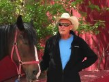 Horseback Riding Ottawa - What ages can children go horseback riding?