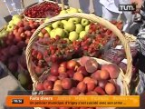 Un marché de fruits et légumes devant l'hôpital (Lyon)