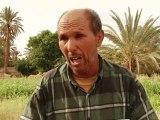 Maroc: l'oasis d'Errachidia menacée par la surexploitation d'eau