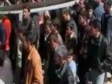 Siria, oltre 8.000 morti
