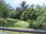 Gran Bahia Principe Akumal Zimmer Yucatan / Cancun Film Video www.Fella.de