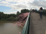 Fragile Performance Artistique au Pont Chinois Mulhouse
