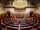 [Stop Motion]Déclaration du gouvernement au Sénat