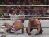 WWF Wrestlemania 13 - Owen Hart and British Bulldog vs Mankind and Vader
