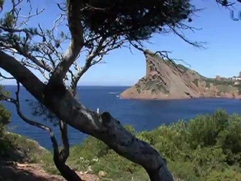LCTV - En ballade à l'île verte
