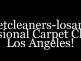 Professional Carpet Cleaning Service Los Angeles. Commercial & Residential Carpet Cleaning Service!