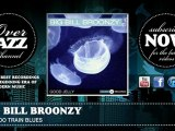 Big Bill Broonzy - Too Too Train Blues (1932)