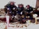 Complices du sionisme