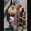 Carnets de voyage - Incredible India - 19 février-2 mars 2012