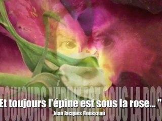 ... Et toujours l'épine est sous la rose : appel à écriture Rousseau et la Turquie