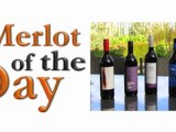 Merlot of the Day - Cosy Corner Estate with Wayne Mansfield