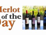 Merlot of the Day - Dreaming Dog with Wayne Mansfield