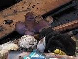 Caracas, El Observador, viernes 13 de julio de 2012, dos niños y una mujer murieron calcinados en su domicilio, en La Vega, en Caracas, cuando el exmarido de la fémina incendió la humilde vivienda