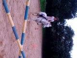 Louise et Kurun en saut