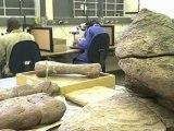 """2 Millionen Jahre alt und fast komplett: der Vormensch """"Karabo"""""""