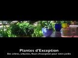 Formation à la conception et à l'amélioration de son jardin