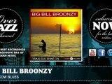 Big Bill Broonzy - Bull Cow Blues (1932)