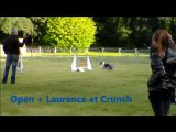 Concours  agility Morlaix club canin landivsiau 2012