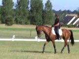 Cheval Equitation préparation jeux olympiques épisode 5