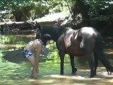Baignade à cheval + Courses au galop