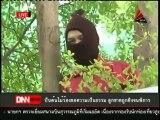 16 7 55 ข่าวค่ำDNN พรรคเพื่อไทยรอคำวินิจฉัยก่อนกำหนดท่าที รธน