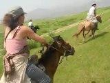 Dernier galop en Mongolie