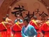 Kung Fu : Un art martial traditionnel chinois