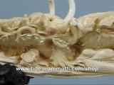 mammoth ivory tusk carving Group of Woolly Mammoth 37440