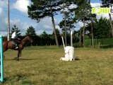 Cheval Equitation préparation jeux olympiques épisode 12