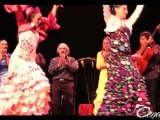 Spectacle Flamenco Cendrillon - Cuento Flamenco cie Flamenca Vanessa Domiati