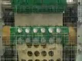 MACCHINE PER PASTA: impianti piccoli medi e grandi per la produzione di pasta