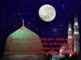 """Tarawih 11 : Sourat Al-Ra'ad  """"Allah sait ce que porte chaque femelle, et de combien la période de gestation dans la matrice est écourtée ou prolongée"""" {Shaikh Ibrahim Mulla}"""