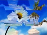ザ・ピーナッツ The Peanuts - 砂に消えた涙/カバー曲