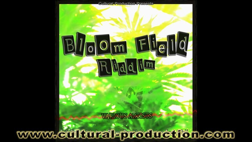 REGGAE DANCEHALL Riddims Mix Culture Vibes [CULTURAL PROD] August 2012