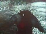 The Elder Scrolls V: Skyrim turning into a werewolf