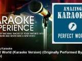 Amazing Karaoke - Perfect World (Karaoke Version) - Originally Performed By Gossip