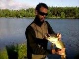 Fishing Brochet / Pike & Bass