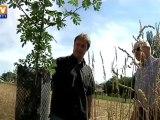 Agroforesterie : des arbres pour protéger les champs