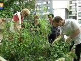 Les jardins partagés : des coins de campagne dans la ville