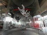 Red Bull Soul Flyers - Soufflerie Parachutisme