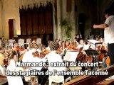 Marmande concert des stagiaires de l'ensemble Taconné