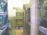 Visite chez EURL poissons exotiques