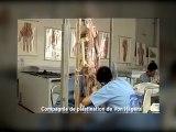 L'usine de plastination de cadavres de Dalian, un sujet chaud sur les micro blogs chinois !