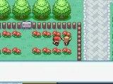 pokemon version rouge feu/02/ Premier Badge / Roche