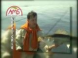 AMS Fishing Présentation DVD Pêches et techniques verticales