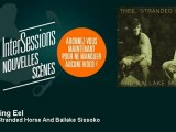 Thee Stranded Horse And Ballake Sissoko - Swaying Eel - InterSessions